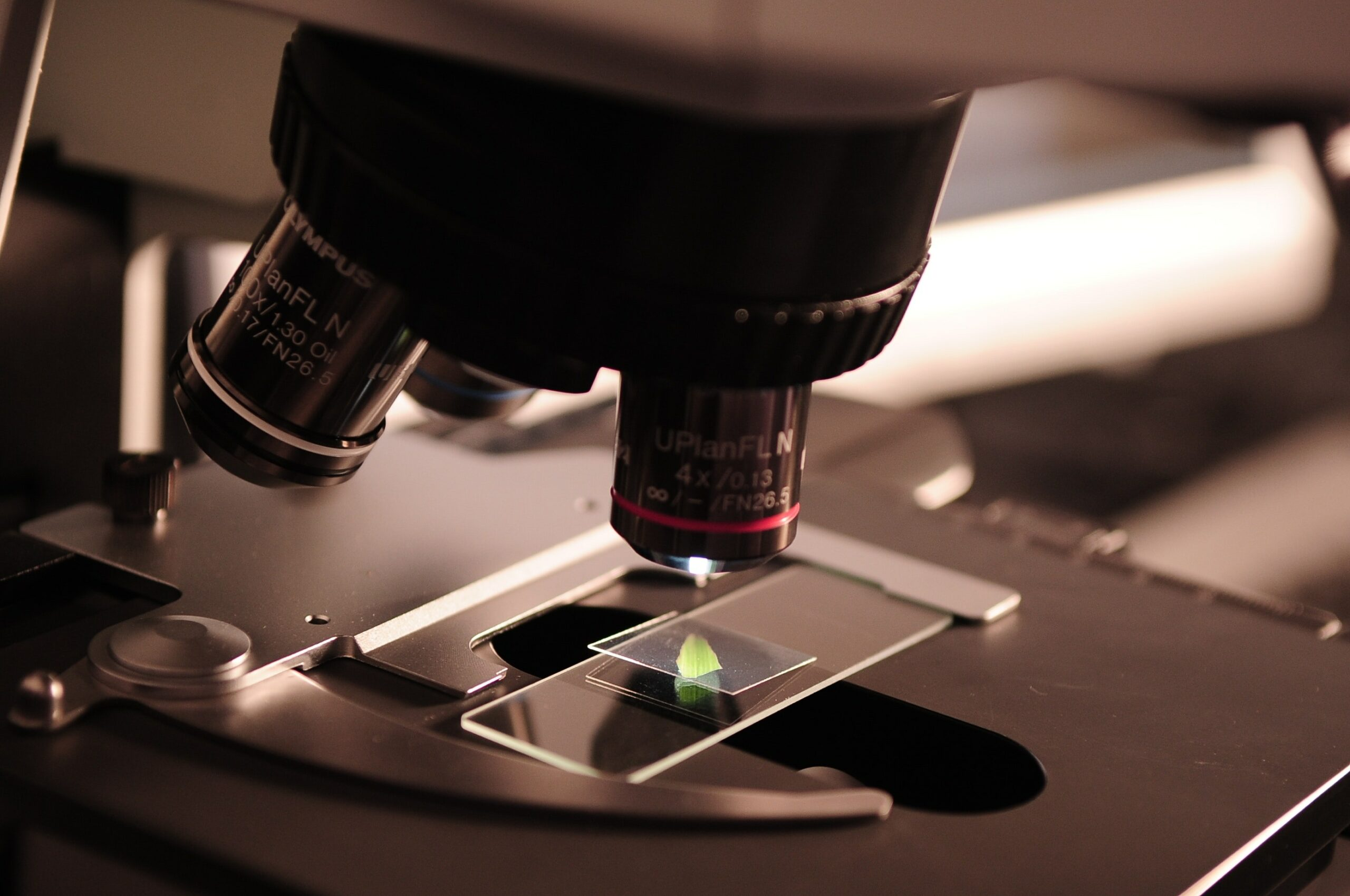 Tumor biomarkers. What are they and what are they for?